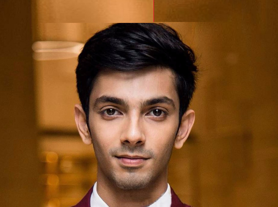Quiz on Anirudh Ravichander